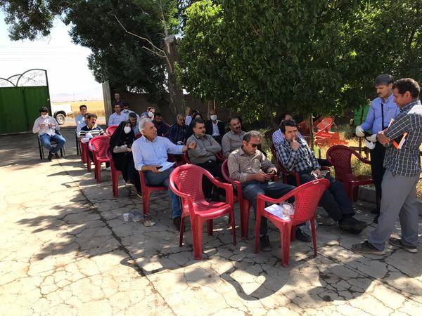 روز مزرعه مقایسه ارقام مختلف گندم آبی در شهرستان آبیک برگزار شد