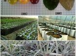جهش تولید و دانش محوری در پژوهشکده خرما و میوههای گرمسیری