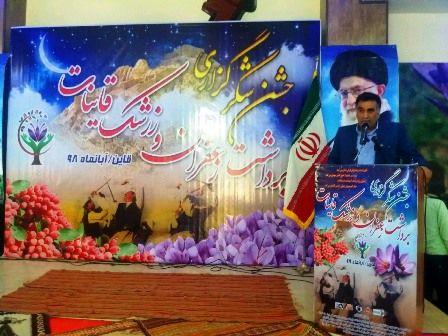 فعالیت بالغ بر 38 هزار بهره بردار زعفران در خراسان جنوبی