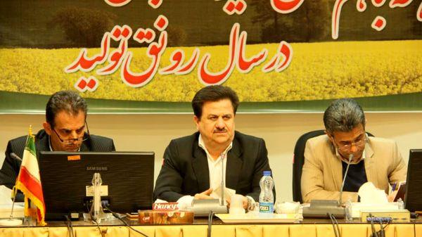 تولید 100 درصدی بذر هیبرید کلزای کشور در استان خوزستان