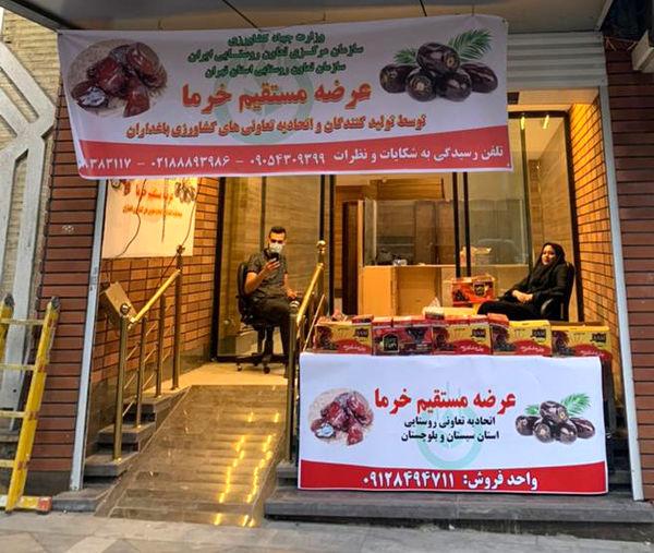 عرضه مستقیم خرمای نخلکاران سیستان و بلوچستان در شهر تهران