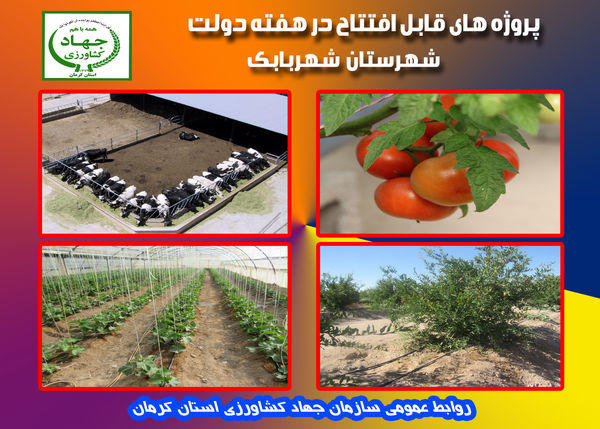 بهرهبرداری  از 8 طرح کشاورزی و دامپروری در شهرستان شهر بابک در هفته دولت