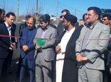 طرح پرواربندی گوساله ۱۰۰ راسی در روستای سیاهپوش شهرستان سلسله به بهره برداری رسید.