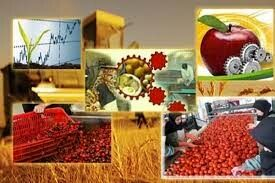 بهرهبرداری از کارخانه فرآوری محصولات باغی در سنندج