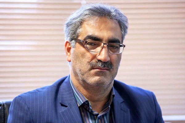پلاک کوبی و هویتگذاری بیش از 358 هزار راس دام در استان کرمانشاه