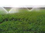کاهش 32 درصدی مصارف آب در بخش کشاورزی آذربایجان غربی