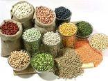تولید بیش از  8 هزار تن انواع حبوبات از اراضی زراعی شهرستان اردبیل