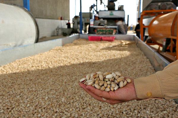 کاهش تولید و «نیما» گریبانگیر صادرات پسته