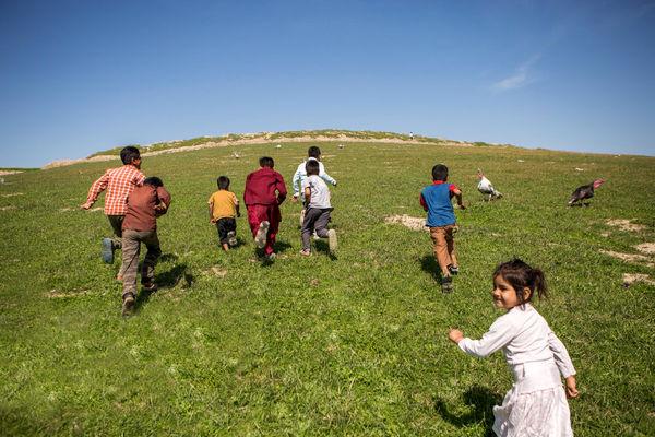 مهاجران در گلستان حاشیهنشین میشوند