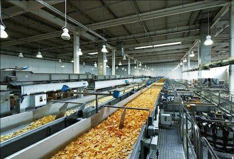 صادرات 1200تن سیب زمینی فراوری شده از واحد تولید چیپس سیب زمینی جوانرود