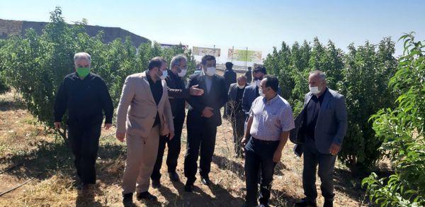 یک طرح آب و خاک در شهرستان تاکستان افتتاح شد