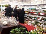 صادرکنندگان گل، بستهبندی، برندسازی و کیفیت را اولویت قرار دهند