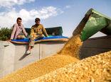 فرصت طلایی برای کشاورزی