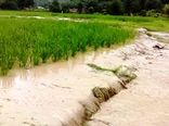 سیلاب و تگرگ ۴۸ میلیارد تومان به آران و بیدگل خسارت زد