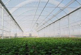 احداث گلخانه و فنس کشی باغات، تغییر کاربری نیست