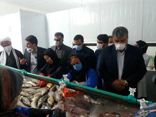 واحد فرآوری ماهی و میگو در شهرستان بیضا گشایش یافت