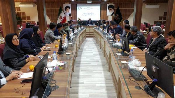 کارگاه آموزشی تبیین راهکارهای اجرای توسعه گلخانه های خراسان جنوبی برگزار شد