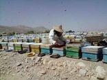 استقرار ۳۲ هزار کلنی زنبور عسل در مراتع لار