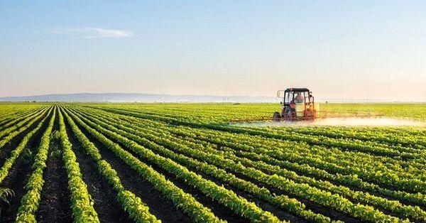 کشاورزی حفاظتی راهکار توسعه پایدار است