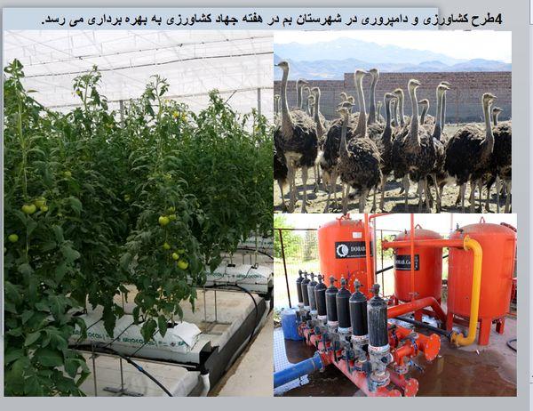 چهار طرح کشاورزی و دامپروری در شهرستان بم