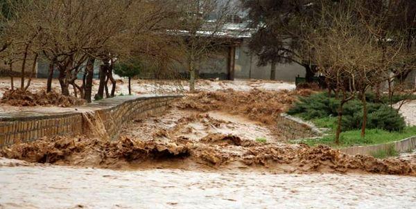 خسارت بیش از ۲۳۵ میلیارد تومانی سیل به بخش کشاورزی استان قزوین