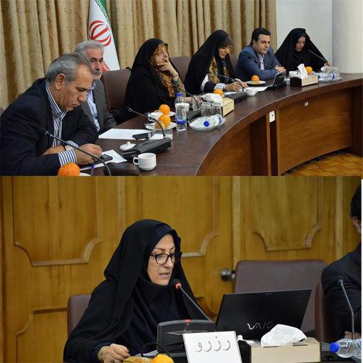 راه اندازی 125 صندوق خرد زنان روستایی وعشایری در آذربایجان شرقی  با عضویت 3500 نفر