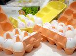 عرضه تخم مرغ بسته بندی توسط انجمن تخم مرغ شناسنامهدار