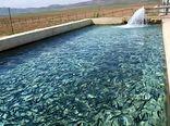 تولید ماهی در خراسان شمالی 14 درصد افزایش یافت