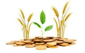رشد 58 درصدی تسهیلات سلف برای محصولات راهبردی