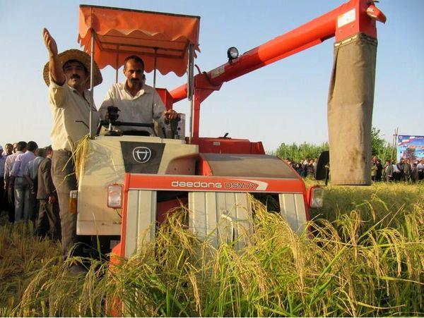 برداشت مکانیزه برنج در 95 درصد شالیزارهای مازندران/ کشت دوم در 110 هزار هکتار