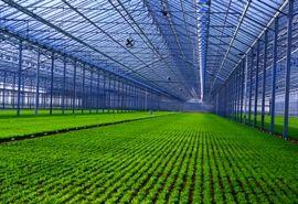 ایجاد 6 هزار هکتار شهرک کشاورزی در کشور