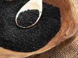 کشت گیاه داروئی سیاه دانه برای اولین بار در میاندوآب