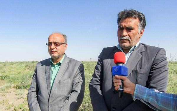 همت جهادی برای مقابله با ملخهای مهاجم در سطح استان خراسان جنوبی