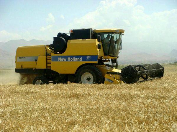 برداشت جو از مزارع کشاورزی شهرستان بویین زهرا آغاز شد