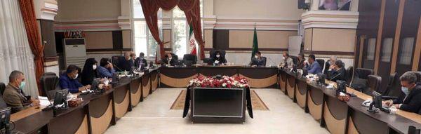 جلسه ستاد اجرایی محصولات گلخانهای استان قزوین