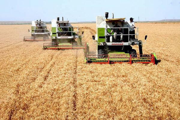 سهم 27 درصدی کشاورزی در تولید ناخالص کردستان
