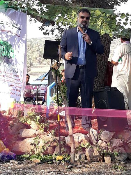 برگزاری سومین جشنواره غوره دشمن زیاری/ فارس، 15 درصد محصولات باغی کشور را تولید میکند