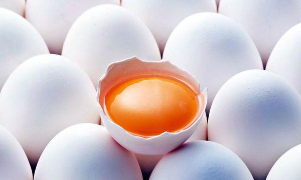 کمک 9 میلیارد تومانی صندوق برای تنظیم بازار تخممرغ/ مشکلی متوجه بازار تخممرغ نیست
