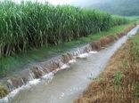 تامین آب مورد نیاز کشاورزی با مدیریت روانآبها