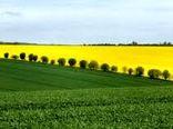 یارانه ۴۰۰ میلیون دلاری لهستان به کشاورزان