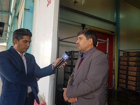 سرانه سردخانه در ایران به 65 کیلوگرم رسید
