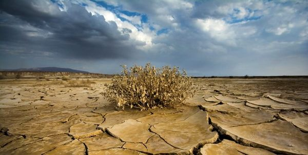 بحران خشکسالی «کردستان» را تهدید میکند