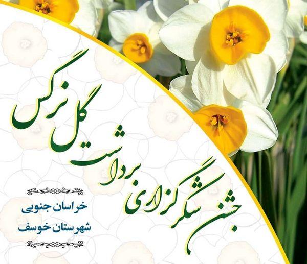 برگزاری جشن برداشت گل نرگس در شهرستان خوسف