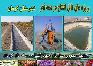 در ایام دهه مبارک فجر 19 طرح کشاورزی و دامپروری در شهرستان کرمان به بهرهبرداری میرسد