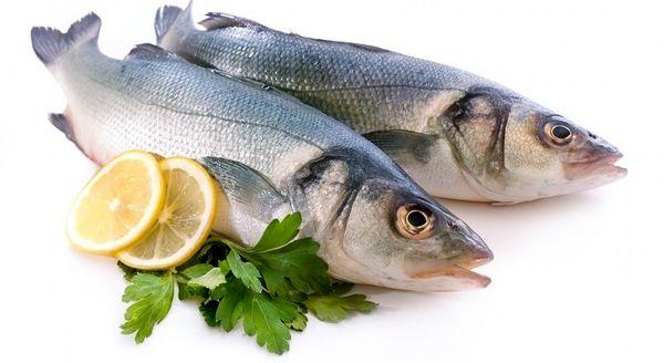 ماهی سالم چه خصوصیاتی دارد؟ + جداول