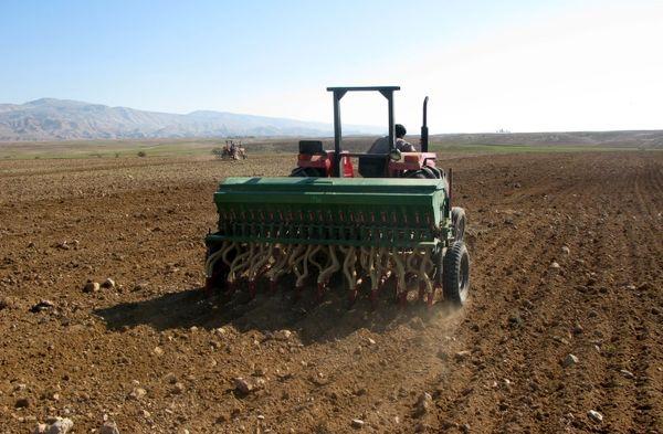 کشت مکانیزه 14 هزار هکتار از اراضی کشاورزی در البرز