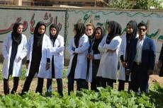 6 ماه کارورزی برای دانشجویان کشاورزی الزامی شد