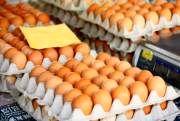 افزایش 58 درصدی قیمت تخم مرغ