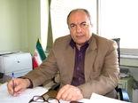 4 میلیون اصله نهال استاندارد در نهالستان های استان قزوین تولید می شود