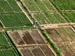 رفع مشکلات کشاورزان شادگانی در طرح توسعه کشاورزی خوزستان